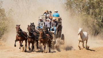 Discover Queensland's Outback in Emerald, Winton & Longreach